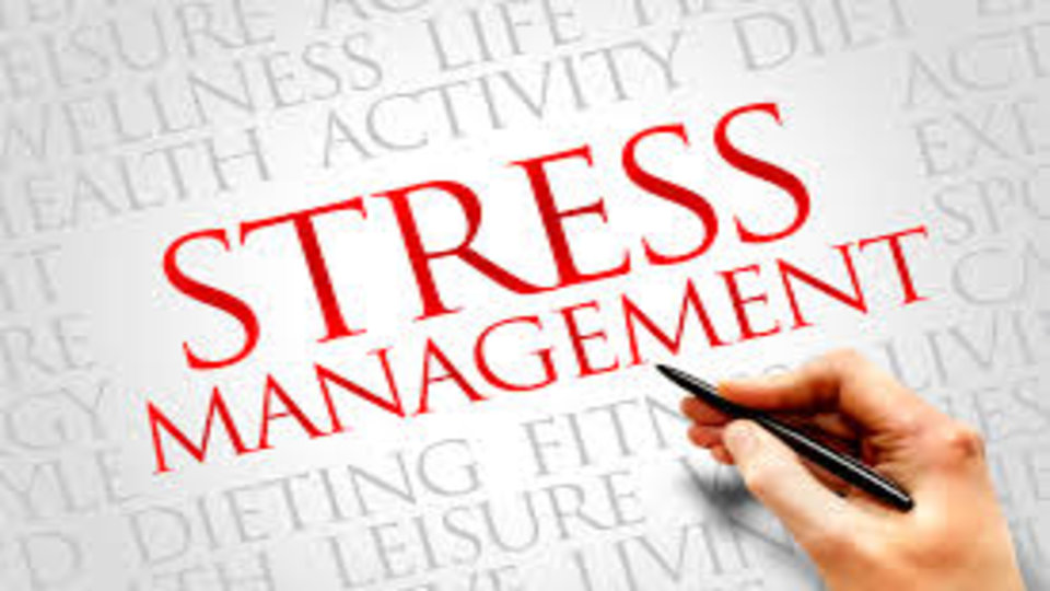 coursework stress in university students It is a thing nobody talks about lecturers constantly speak of remaining calm whilst doing coursework and exams, but never do they mention the stress that comes.
