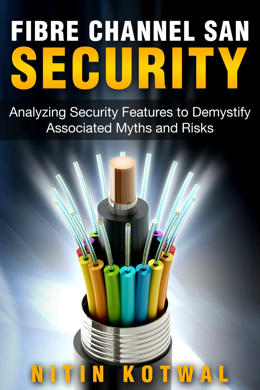 E-book Fibre Channel SAN Security