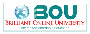 Brilliant Online University